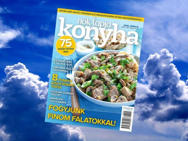 NLKO 2016 április címlap