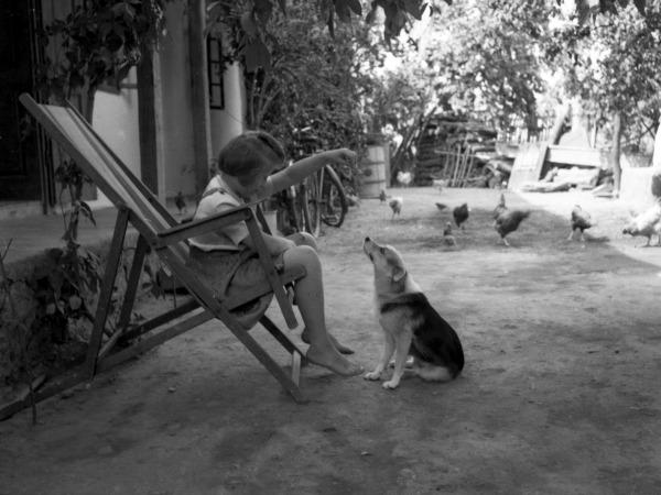 kislány-kutya