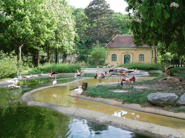 schönbrunni-állatkert