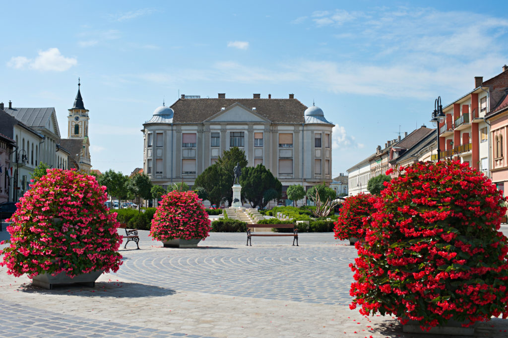 Baja city center. Baja is a city in southern Hungary. Famous tourist destintion.