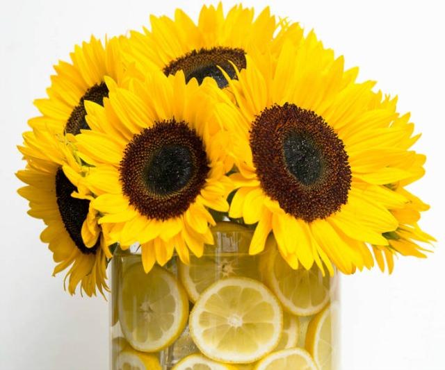 váza.jpg2