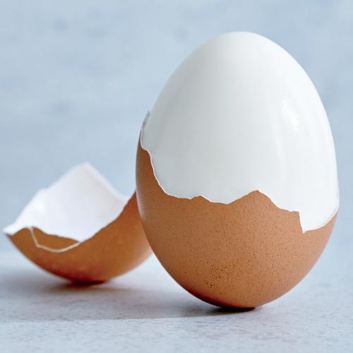 tojás2