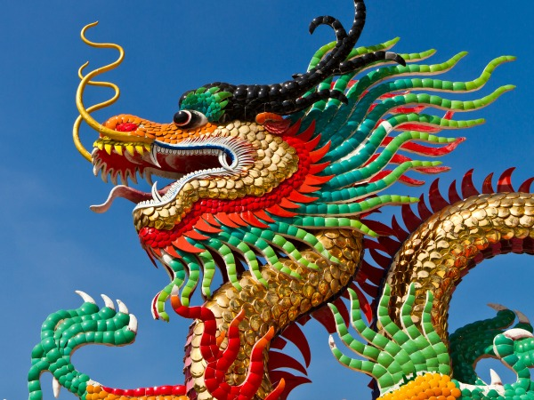 kínai-sárkány