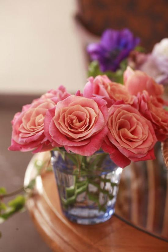 1479765306-hbu-stress-plants-rose-bouquet