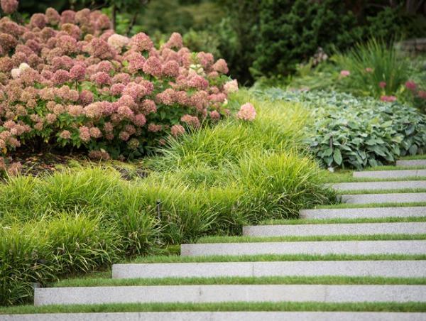 dwarf-shrubs-garden-design_11506