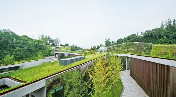 green-roofs-05