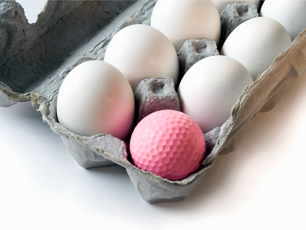 nő-tojás